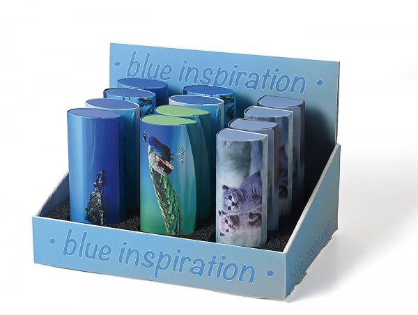 Blue-Inspiration Brillenetui Set